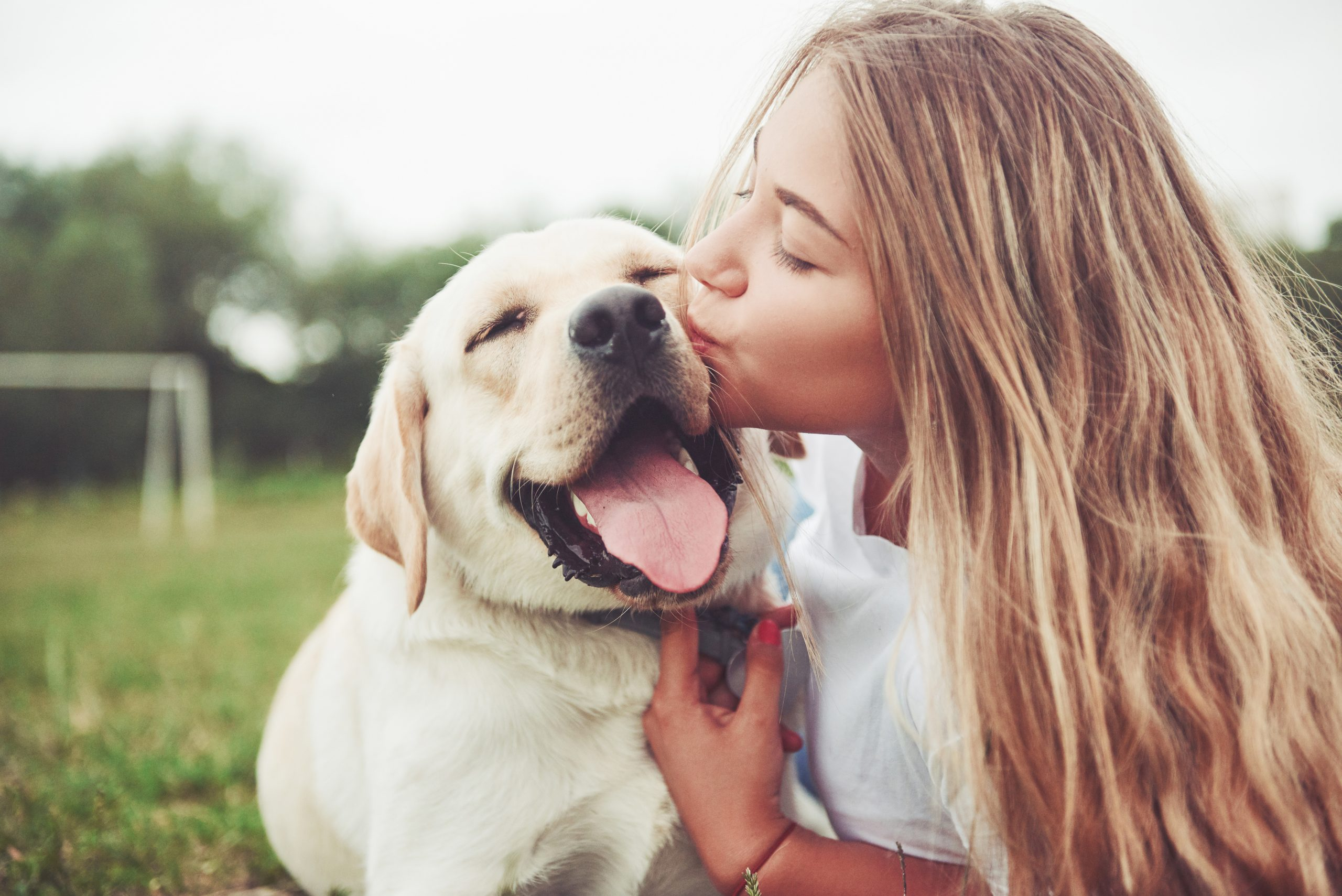 The Power of Pets When It Comes to Your Health
