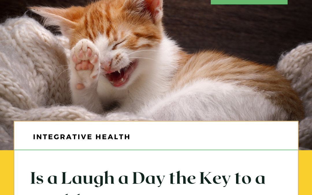 Is a Laugh a Day the Key to a Healthy Heart?